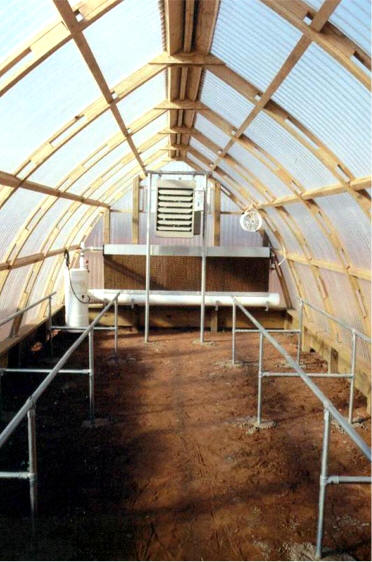Gothic Arch Greenhouses Review J Amp L Madonia