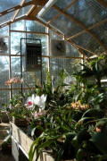 Greenhouse Projects