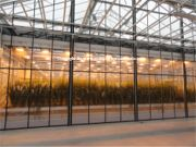Research Greenhouses