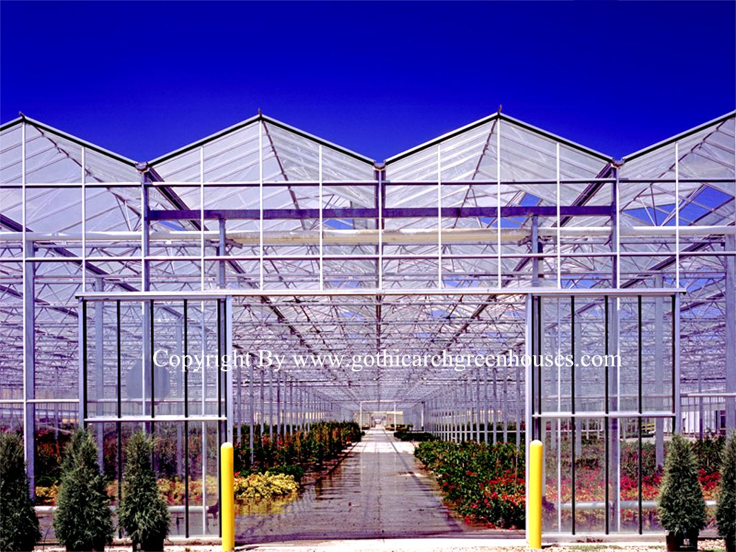Df Greenhouses Gothic Arch Greenhouses
