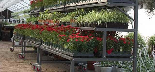 Commercial Stationary Greenhouse Benches