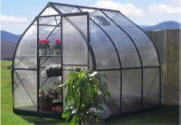 Small Gothic Greenhouse