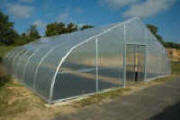 Commercial Greenhouse - PT-30 Plastic Greenhouses