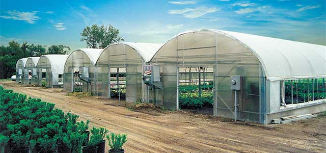 Expansion Mansion Greenhouse