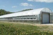 Commercial Greenhouse - Expansion Mansion Greenhouses