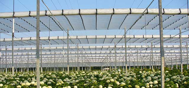 Flat Roof Retractable  Greenhouse