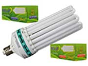 Fluorescent Grow Lamps
