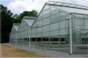 Gable Greenhouse
