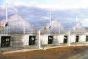 Commercial Greenhouse - Gable Series 7500 Greenhouse