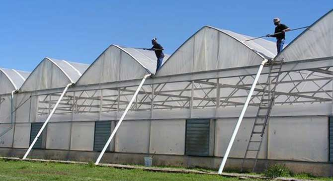 Greenhouse Covering Gothic Arch Greenhouses