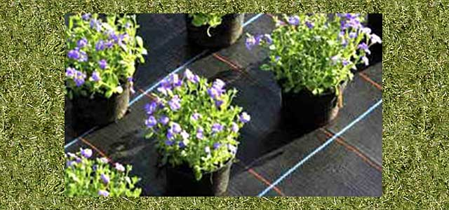 Ground Covers & Crop Covers