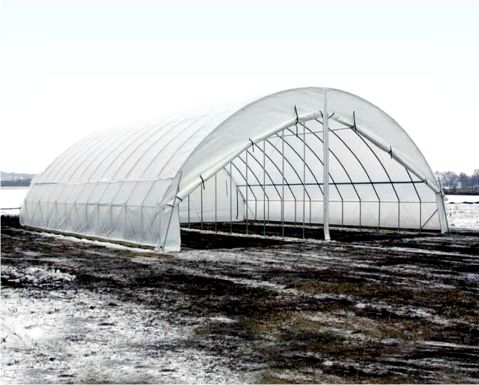 Sielsie aquaponic seeds for sale learn how for Gothic greenhouse plans