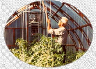 Greenhouse Manufacturers