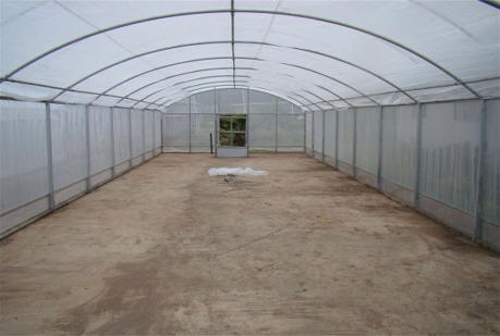 Insect Screen Greenhouse