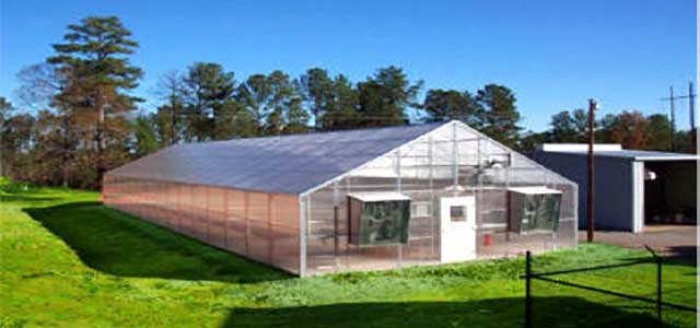 a frame greenhouse packages