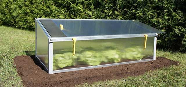 Incredible Mini Greenhouse Kits Gothic Arch Greenhouses Download Free Architecture Designs Xerocsunscenecom