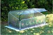 Mini Greenhouse Cold Frame Single