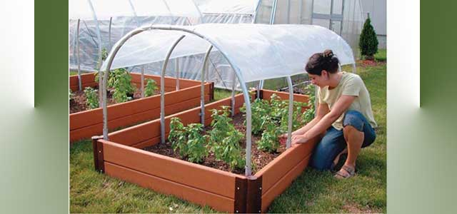 Mini Cold Frames