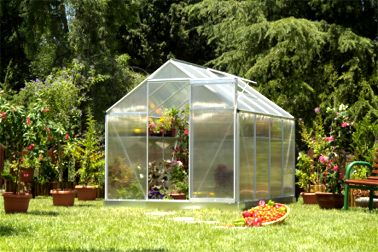 Small  Greenhouse-M-L Silver Greenhouses