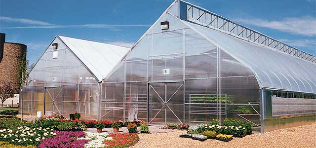 Natural Ventilation Greenhouse Gothic Arch Greenhouses