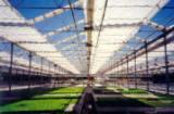 Retractable Roof -Curtain Greenhouse Systems