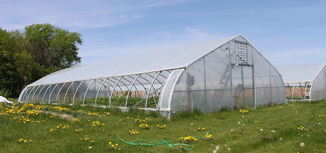 Pt 30 Greenhouses Gothic Arch Greenhouses