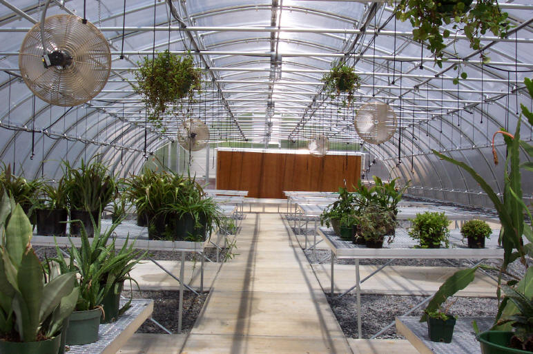Quonset greenhouse gothic arch greenhouses for Gothic greenhouse plans