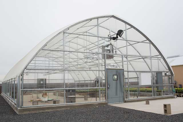Ranger greenhouse gothic arch greenhouses for Gothic arch greenhouse plans
