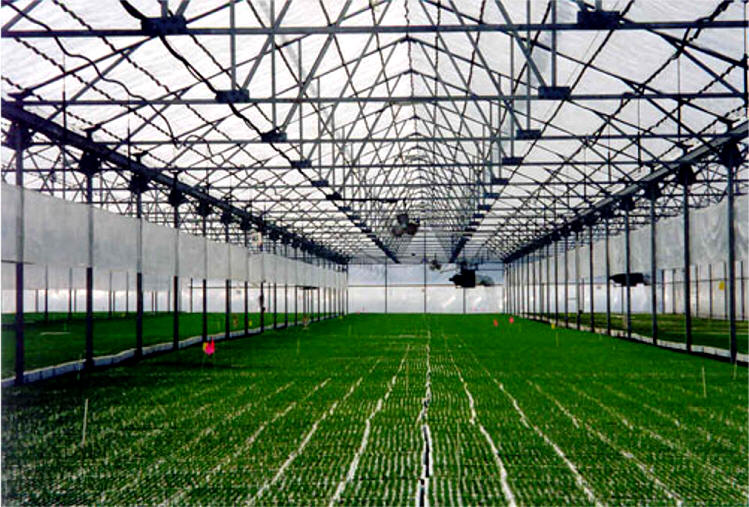 Retractable Roof Greenhouses Gothic Arch Greenhouses