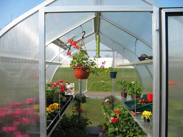 Riga greenhouse gothic arch greenhouses for Gothic arch greenhouse plans