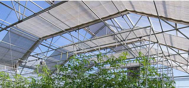 Shade Cloth for Greenhouses