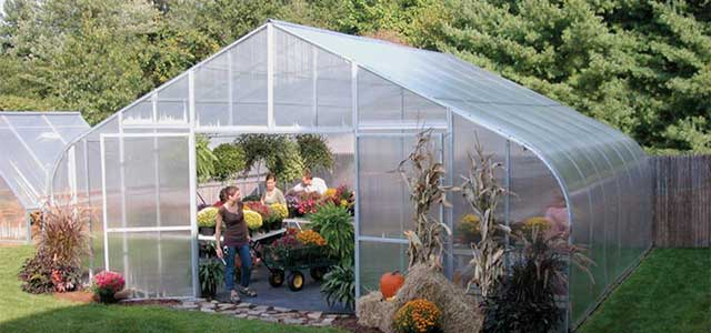 Gothic Solarstar Large Greenhouse With Film Gothic Arch