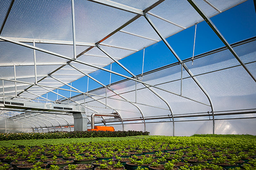 Solawrap Greenhouse Covering Plastic Film Gothic Arch