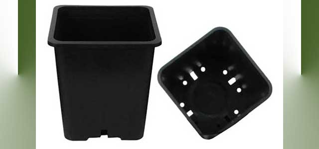 Square Black Plastic Pots