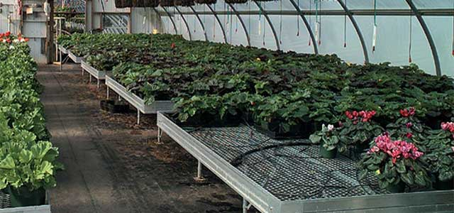 Stationary Greenhouse Benches
