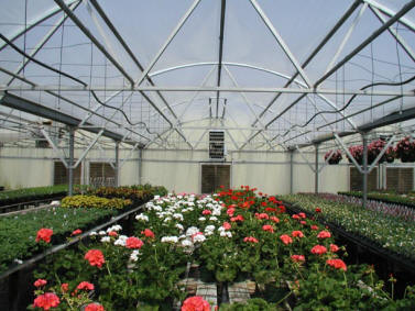 greenhouses - Commercial Greenhouse Kits