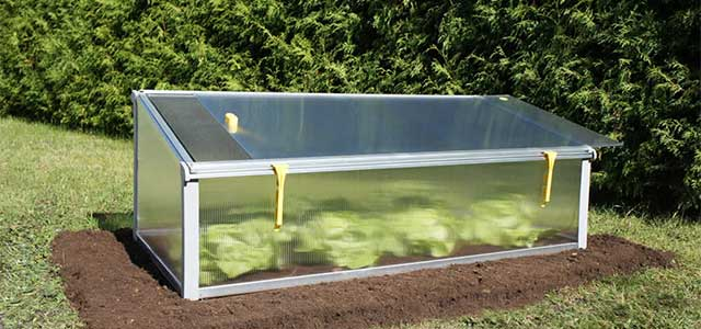 Mini Year Round Cold Frame